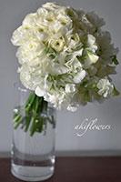 whitegreen_2021_s